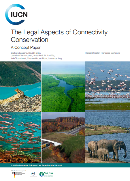 Capa da The legal aspects of connectivity conservation. A concept paper