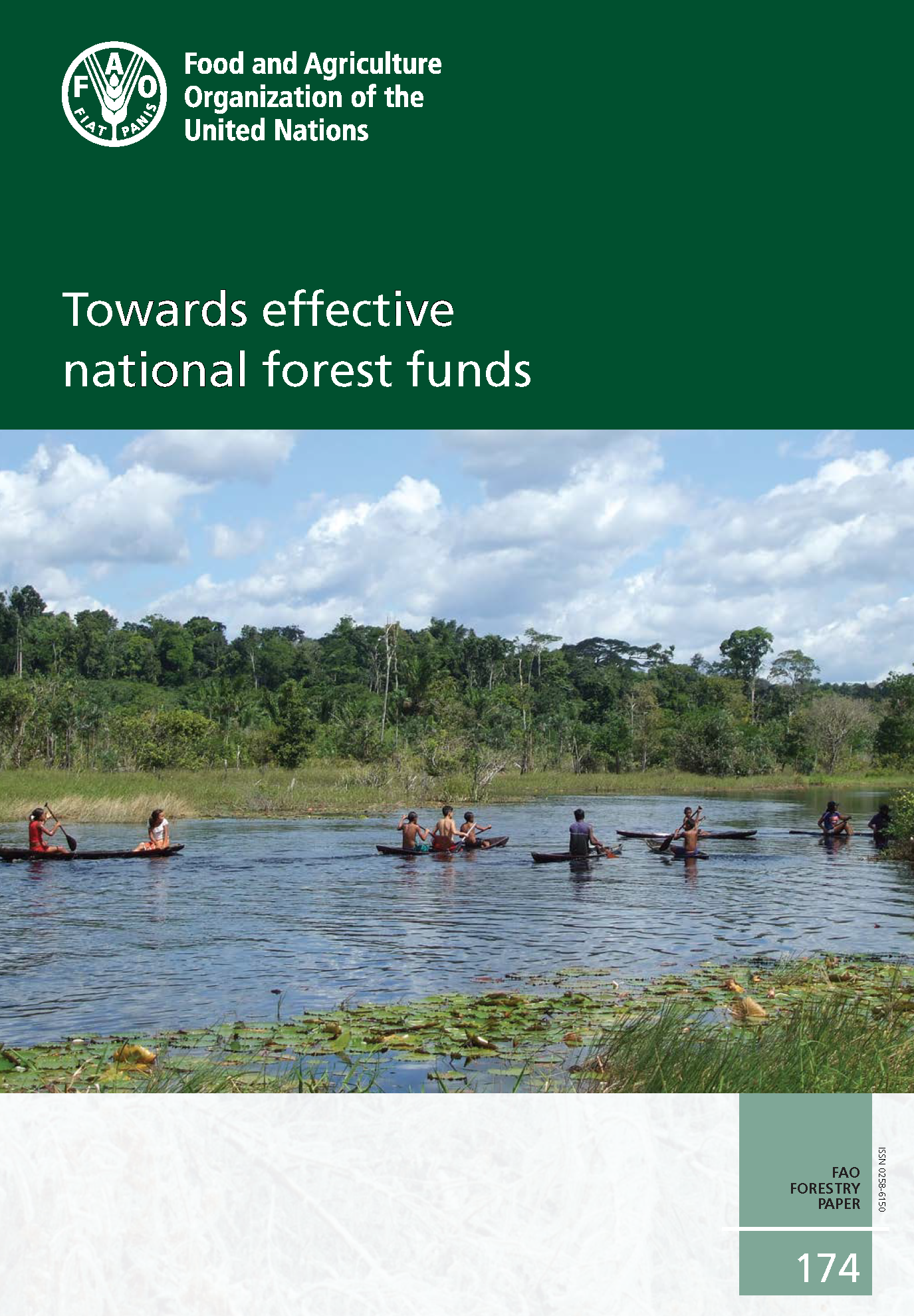 Capa da Towards effective national forest funds