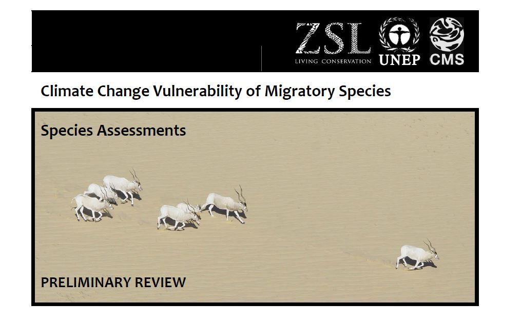 Capa da Climate Change Vulnerability of Migratory Species