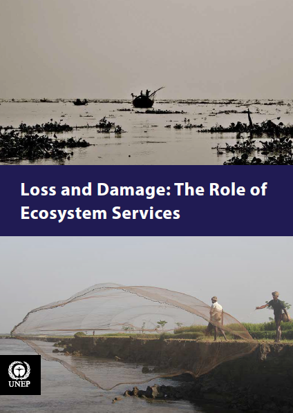 Capa da Loss and Damage: The Role of Ecosystem Services